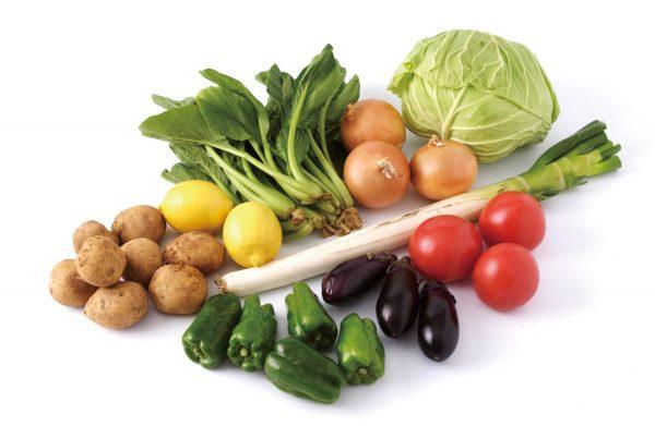 B-069飲食蔬菜_外部提供授權使用